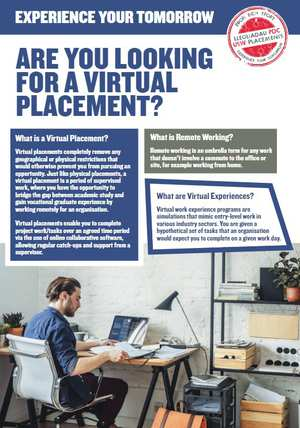 Are you looking for a virtual placement.jpg
