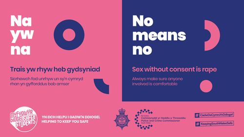 C20-0119_Safer Students_Messaging_Social Media_Consent.png