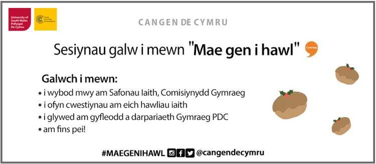 Cangen Poster Cym.jpg