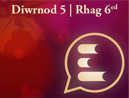 Diwrnod 5