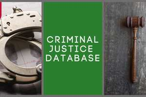 Focus on database_ Crim justice.jpg