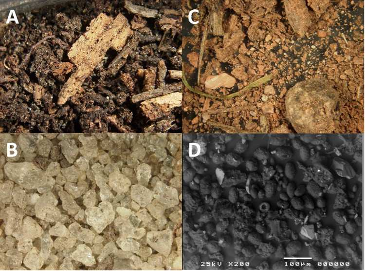 Forensic soil characteristics can allow the identification of unknown geographical locations.jpg