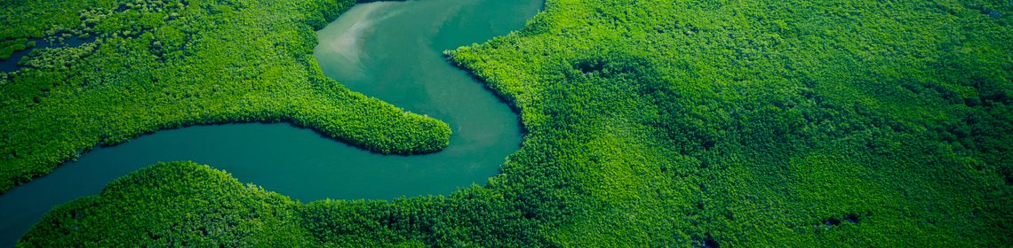 Rivers Ecology Wildlife GettyImages-1190336132.jpg