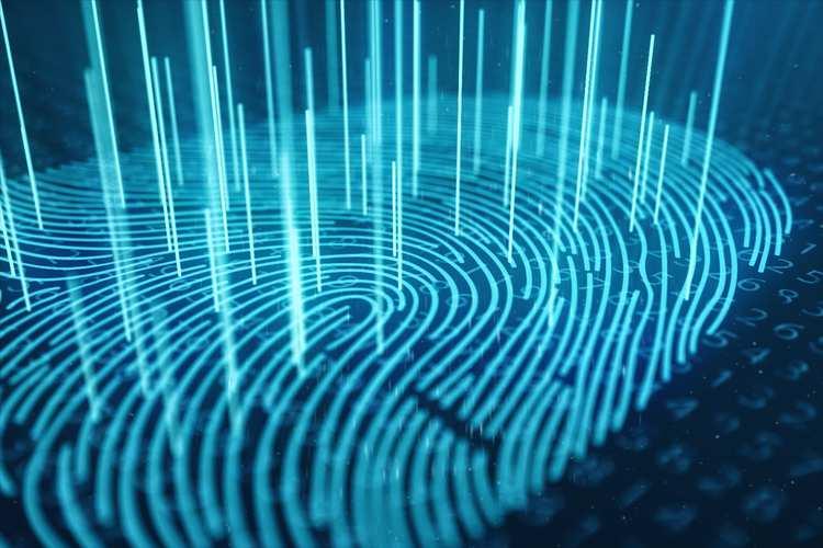 Digital Fingerprint GettyImages-1023310814.jpg