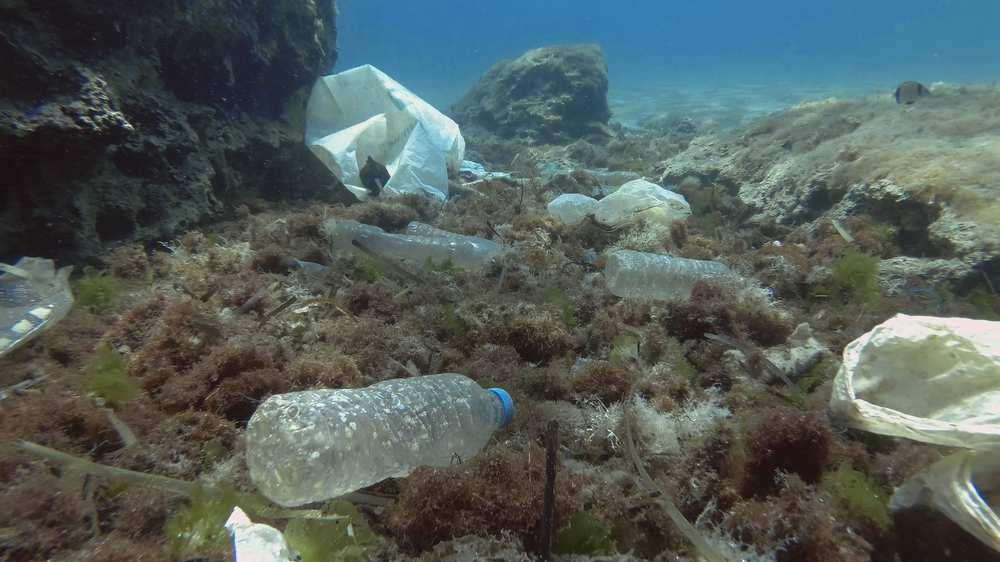 Plastic bottles in the ocean GettyImages-1287574718.jpg