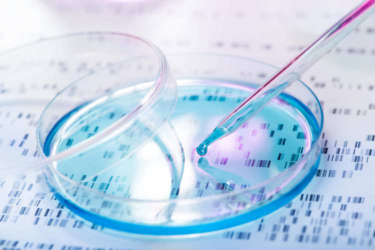 Stock photo DNA sample being pipetted into petri dish with DNA gel in background GettyImages-477335408.jpg