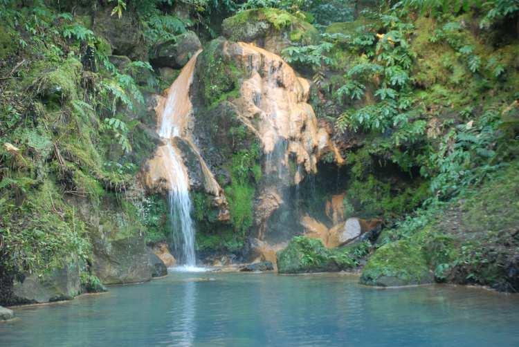 Wildlife Ecology - Azores_Sampling_Site