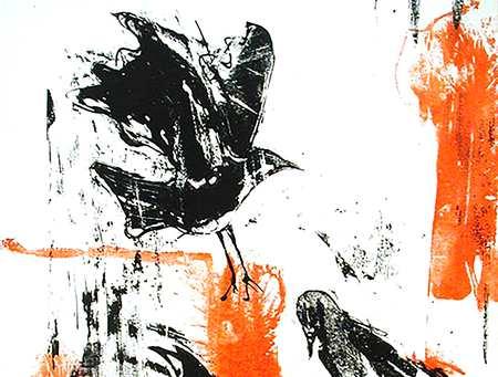 Lucy-Donald-Ravens.jpg