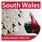 Vocabulary for Welsh Learners: Entry Level  podcast covers