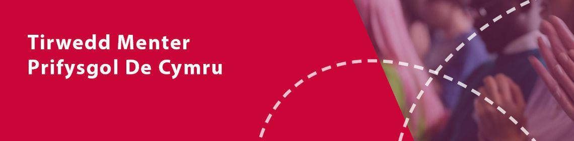 Web Banner Welsh