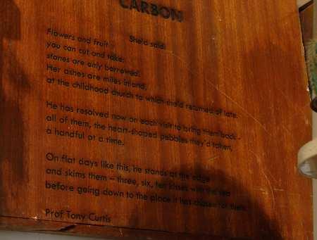 carbon_T_Curtis_enlarge.jpg