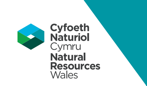 National Resources Wales logo