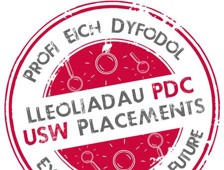 student USW Placements logo.jpg