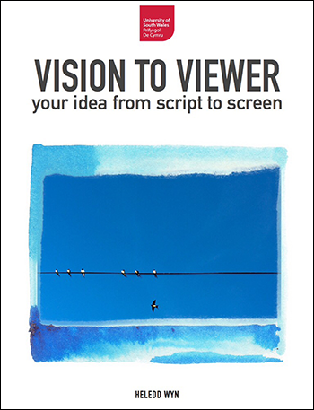 Vision to Viewer iBook cover