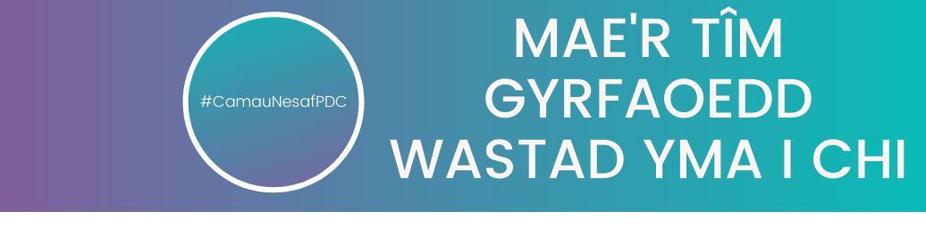 website banner welsh.png