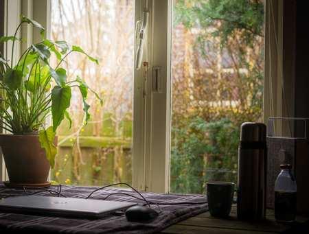 window isolation.jpg
